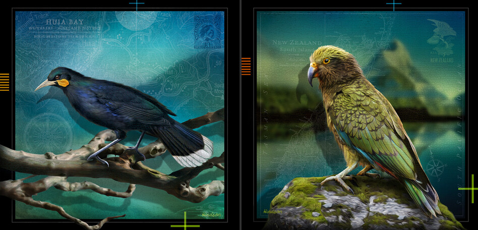 Huia & Kea - DIGITAL ART - NATIVES SERIES