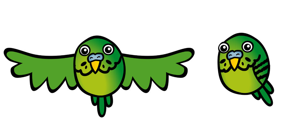 BUDGIE POWER - LOGO ILLUSTRATION